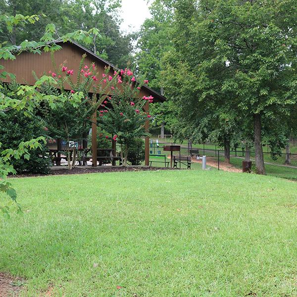 Paulding County Economic Development Parks DogWoods at Coleman Camp Park - Paulding County Economic Development